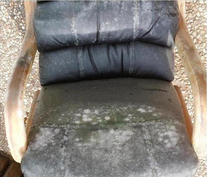The image shows how quickly mold formed on a customers chair after it was exposed to water.